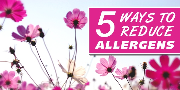 5 Ways To Reduce Allergens In Your Home